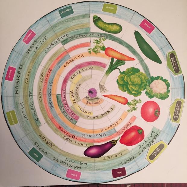 saison-des-legumes-974